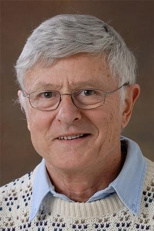 Former University of Illinois Professor Louis Wozniak was fired Thursday, Nov. 14 during a vote by the U of I's Board of Trustees.