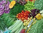 beautifully arranged variety of vegetables