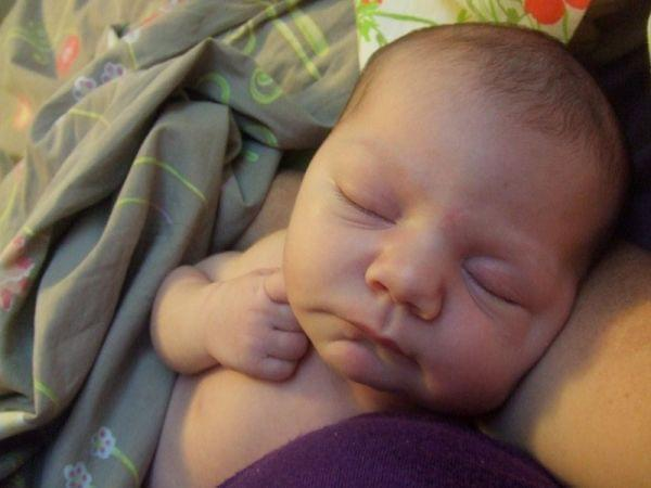 Baby Clementine, daughter of Rebecca Butler and Tom Sheehan of Champaign.