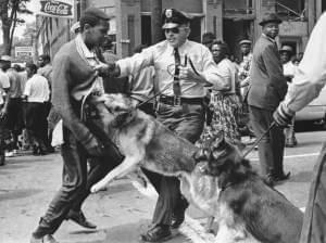 A young demonstrator is attacked by a police dog in Birmingham, Ala., in May 1963.