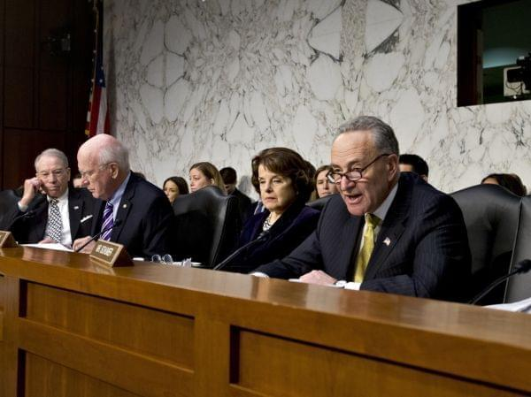 Sen. Chuck Schumer during the immigration hearing