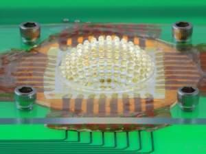 An insect's eye lets it see really well because each of its light-sensitive cells has a dedicated lens. This miniature camera, which mimics an insect eye, is made from an array of microlenses arranged on a stretchable sheet that can be inflated