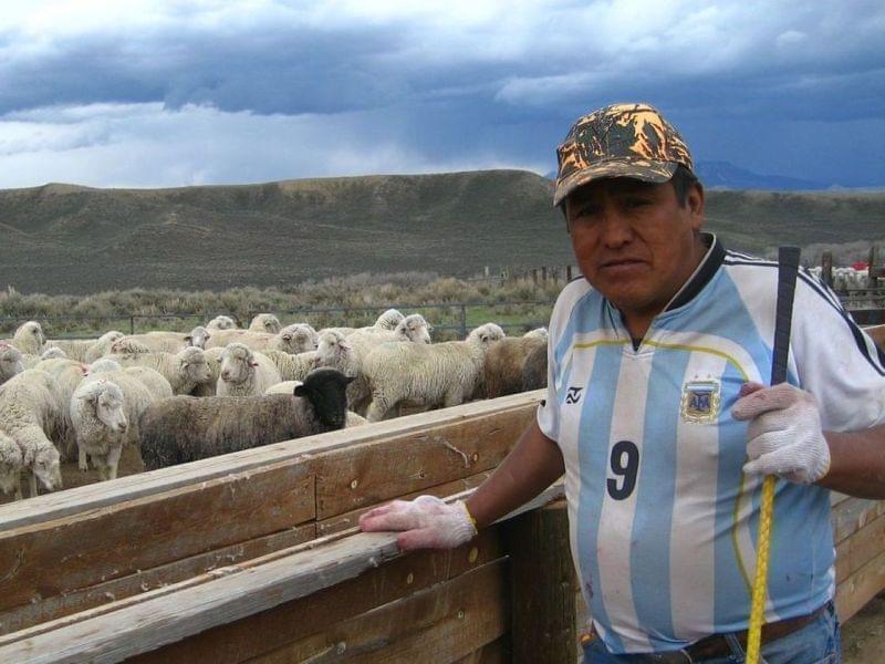 herder farmer