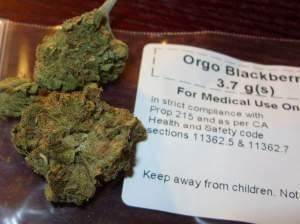 Marijuana used for medicinal purposes.