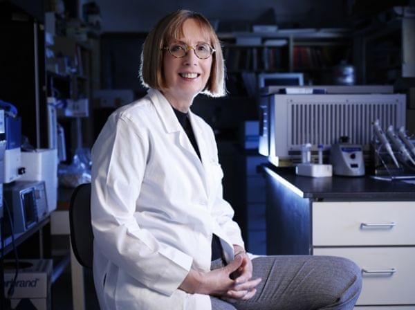 Dr. Kathleen Campbell