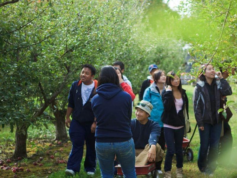visitors at Curtis Orchard