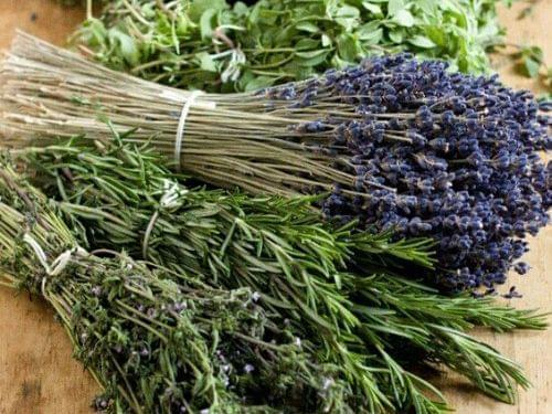 Rosemary and other bundled herbs