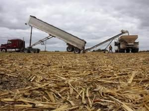 Central Illinois farmer Tom Humphrey moves fertilizer from a transport truck to a field spreader on a freshly harvested corn field in Chatham, Ill., Monday, Oct 27, 2008.