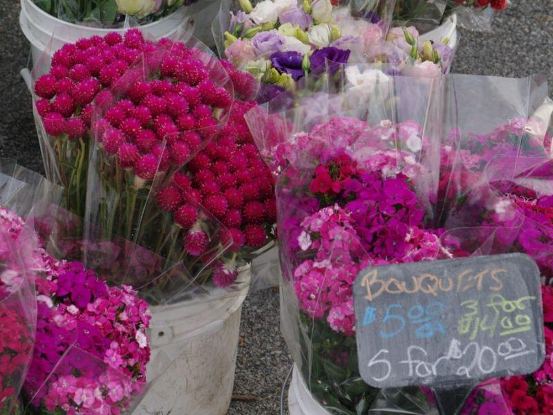 cut flowers at Urbana's Market at the Square