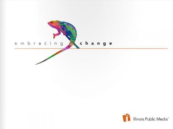 cover of the 2013 Illinois Public Media annual report