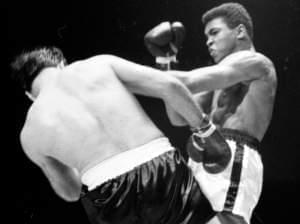 "Cassius Clay stinging ""like a bee"""