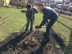Ann-Marie Stimphson and Wes Kocher of Champaign plant a tree on Saturday, April 5, 2014 in Gifford, Ill.