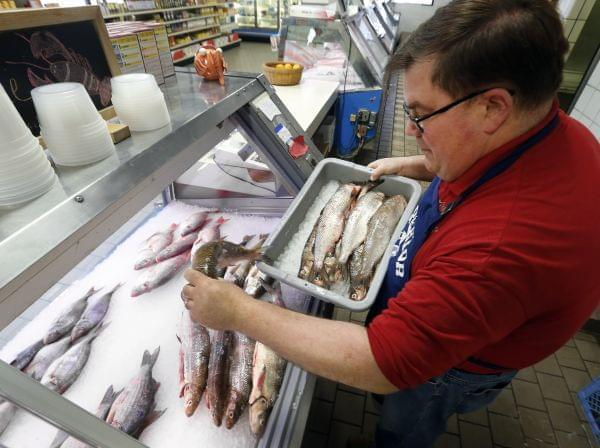 Kevin Dean, co-owner of Superior Fish Company, puts Whitefish out for sale in Royal Oak, Mich., Monday, April 14, 2014. Many fish markets in the Great Lakes region are running short of whitefish, and it's coming at a bad time: Passover.
