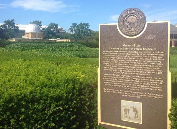 The Morrow Plots are the oldest experimental cornfield in the Western Hemisphere.