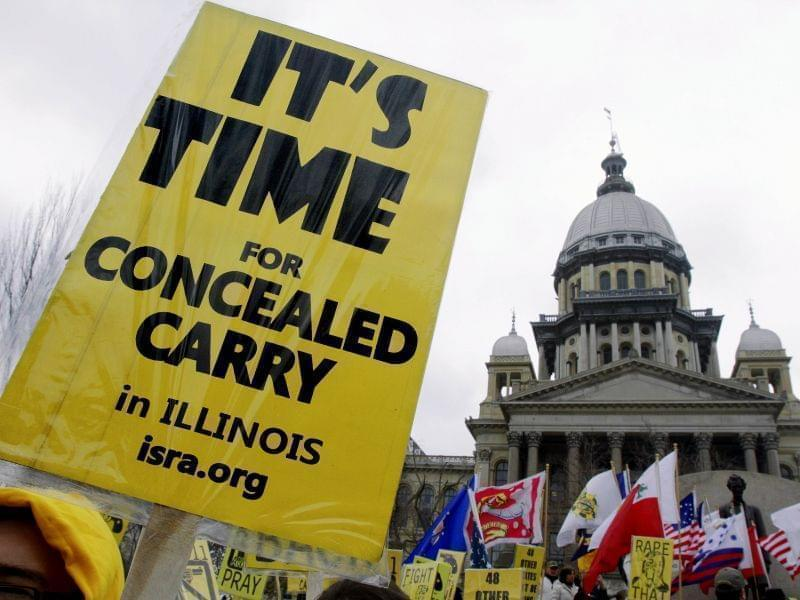In this March 10, 2011 file photo, gun owners and supporters show their support during Gun Owners' Lobby Day at the Illinois State Capitol in Springfield.
