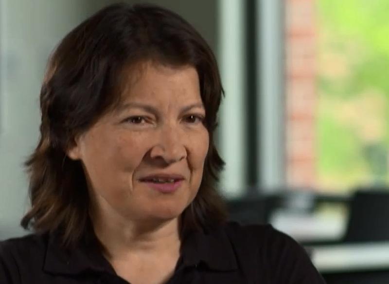 U of I Civil Engineer Tami Bond, one of 21 MacArthur Foundation 'genius' grants