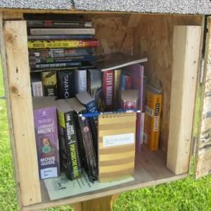 The contents of the Barclay Public Library District's Little Free Library in Warrensburg.