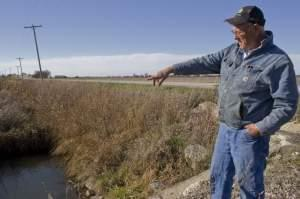 Farmer Lin Warfel stands on his farm in front of a drainage area