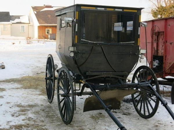 Horse-drawn buggy in Arcola Illinois.