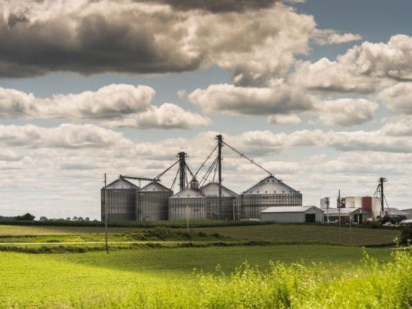 Scene from Wisconsin farm.
