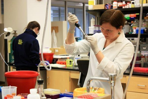 University of Illinois researcher working on cancer drugs in a lab