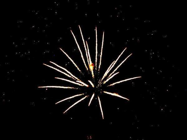 Fireworks display - single starbust