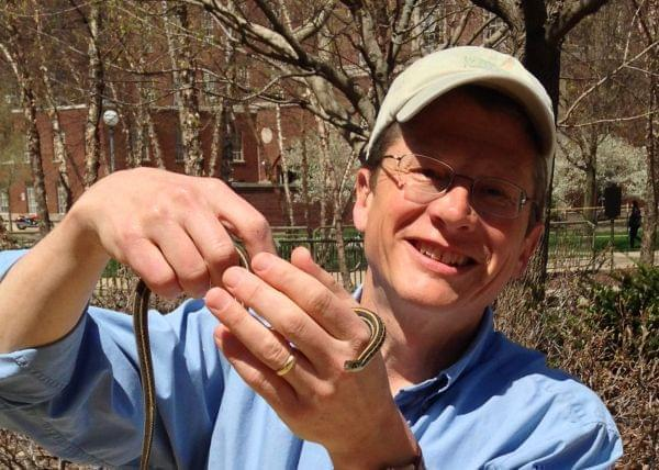 Rob Kanter holding a small garter snake