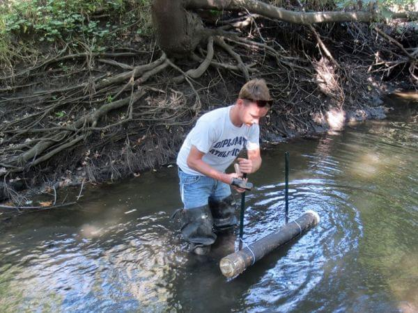 Conor Neal stands in knee-deep water, installing a sediment trap in Wildcat Slough