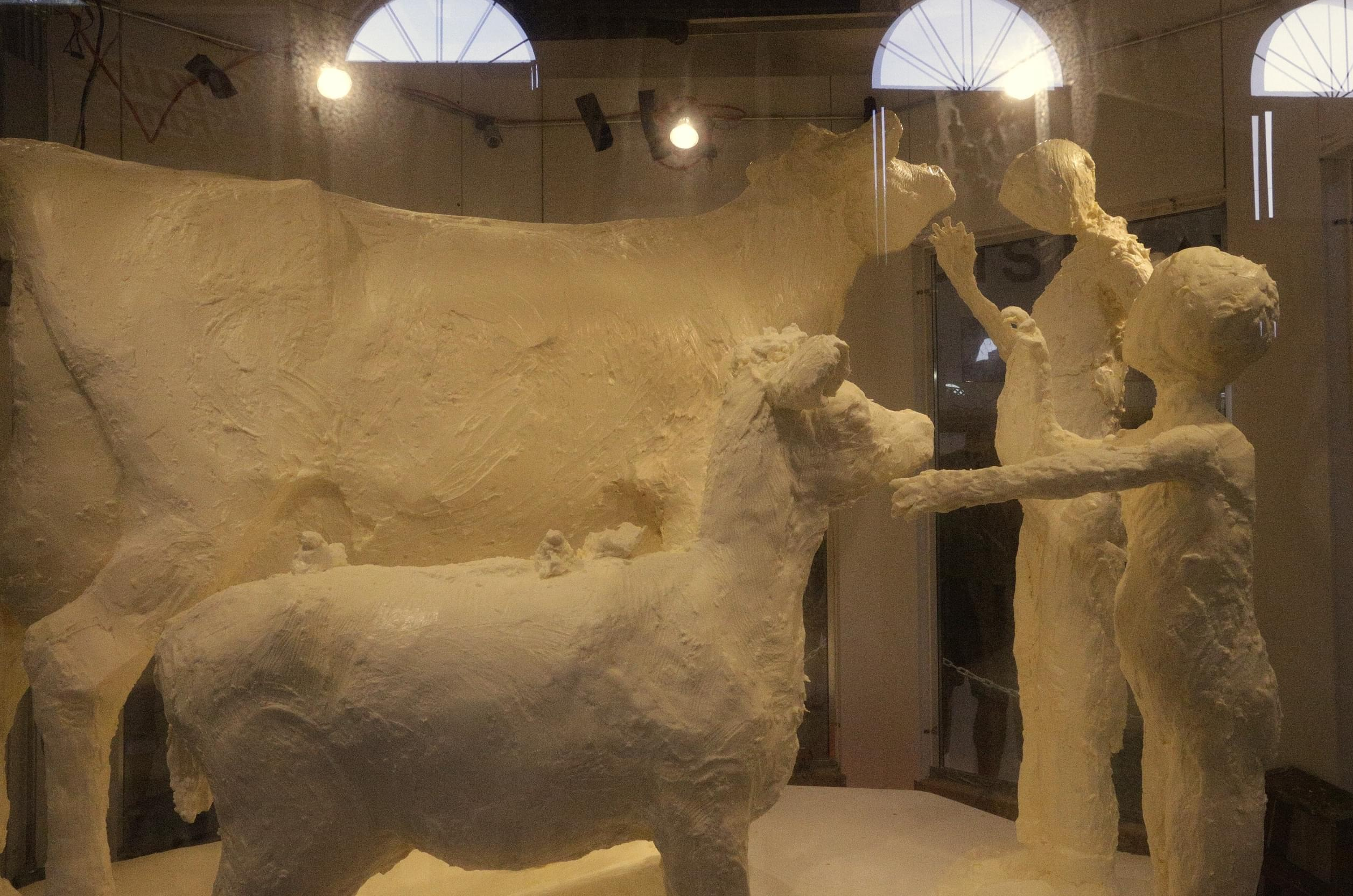 The work-in-progress 2015 Illinois State Fair butter cow is unveiled at the Illinois State Fair Thursday, Aug. 13, 2015, in Springfield.