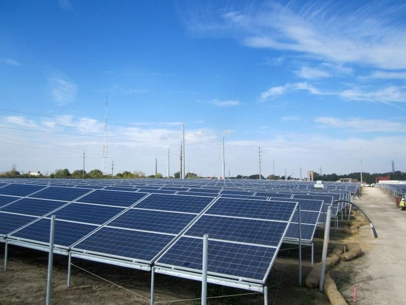 Solar panels at the new University of Illinois Solar Farm.