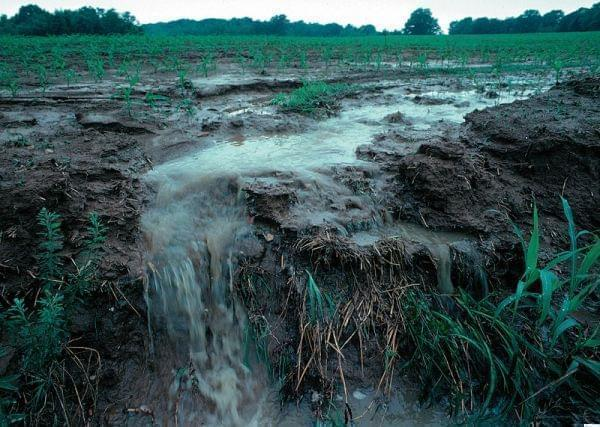 Soil erosion on a farmland