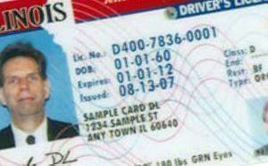 a sample Illinois driver's license