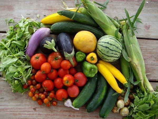 A table with produce - corn, tomatoes, squash, eggplant, and other vegetables