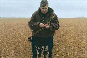 Lynn Rohrscheib inspects her soybean fields.