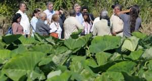 U.S. Secretary of Agriculture Thomas Vilsack, and Senator Jeff Merkley of Oregon in Havana, Cuba
