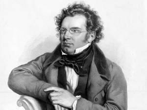 Portrait of Franz Schubert.