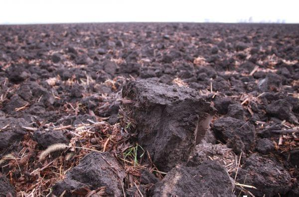 Close-up of Tilled Soil