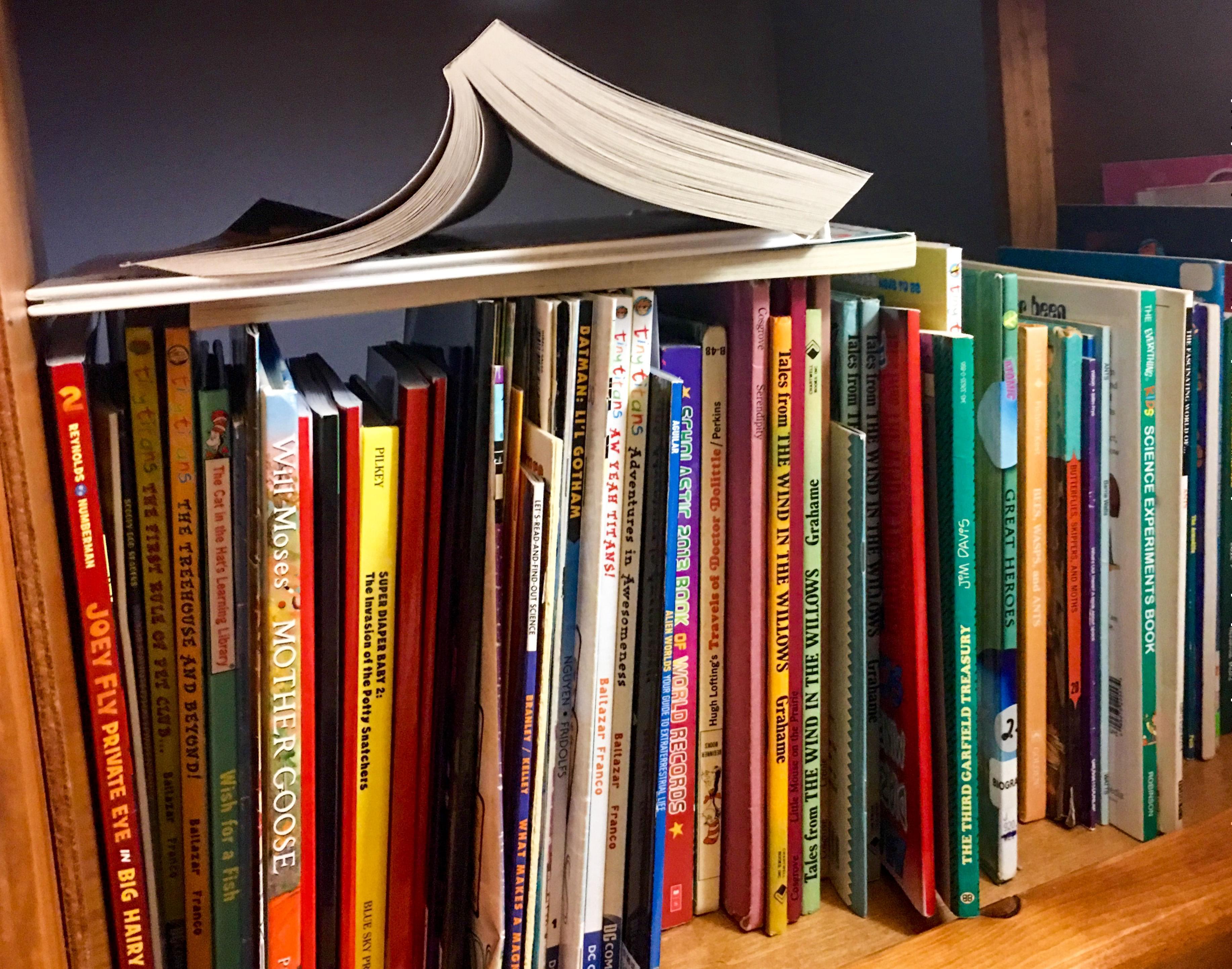 Bookshelf filled with children's books