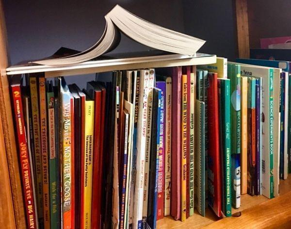 Bookshelf filled with children's books