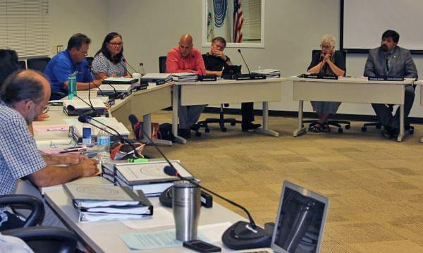 The Champaign County Board member Diane Michaels discusses the 1/4-cent sales tax ballot item in Thursday's meeting.