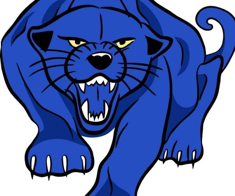 PBL Panther Logo