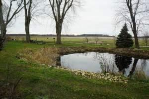 A pond behind Kathi and Jerry Jurkowski's home in Rockton.