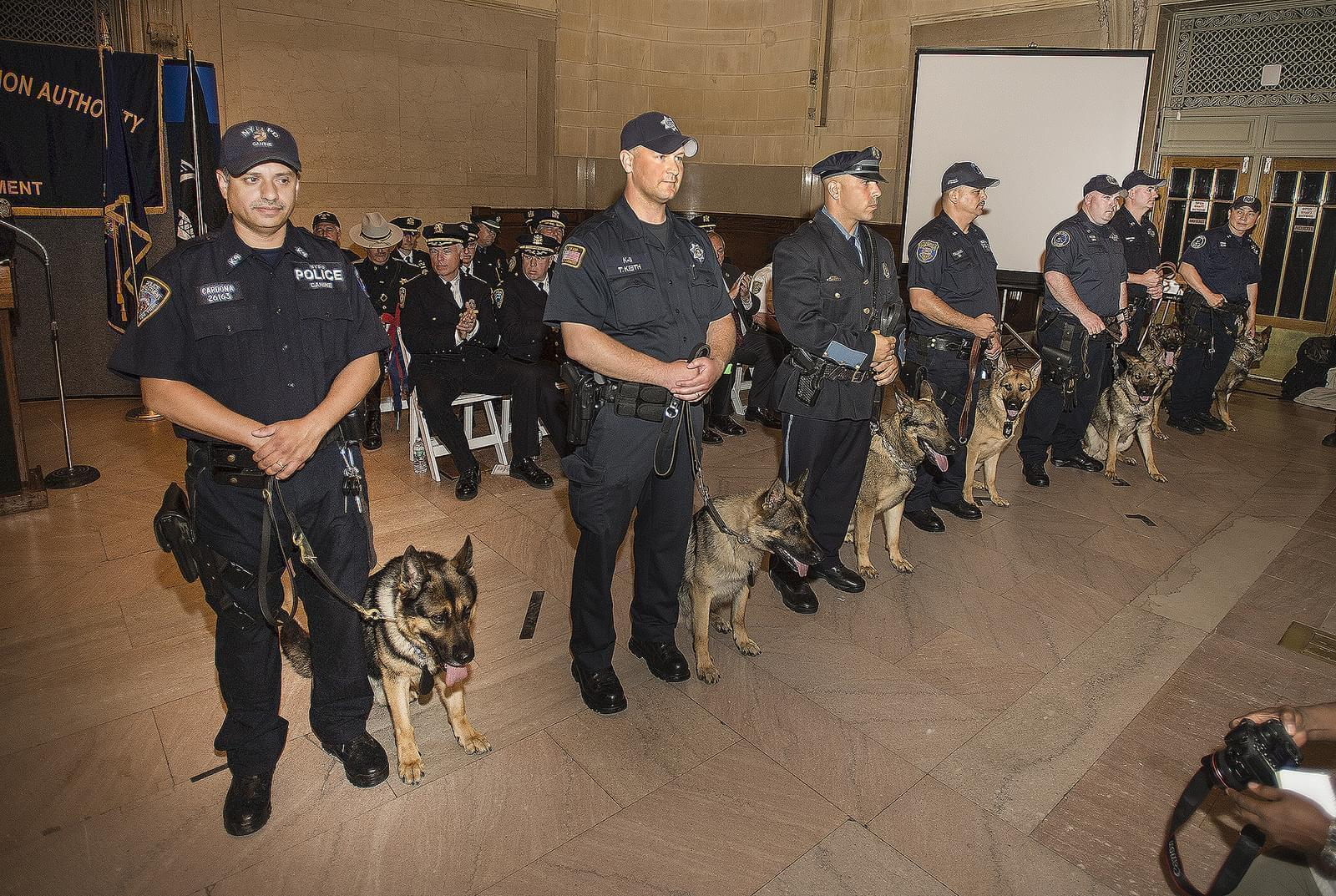 Police officers and K-9 Officers in New York City.