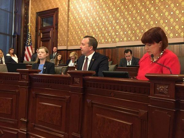 Sens. Andy Manar, D-Bunker Hill, and Heather Steans, D-Chicago, introducing the new budget proposal in a Senate hearing.