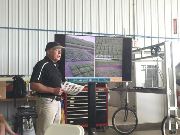 RIPE Project Associate Director Don Ort discusses field trials.
