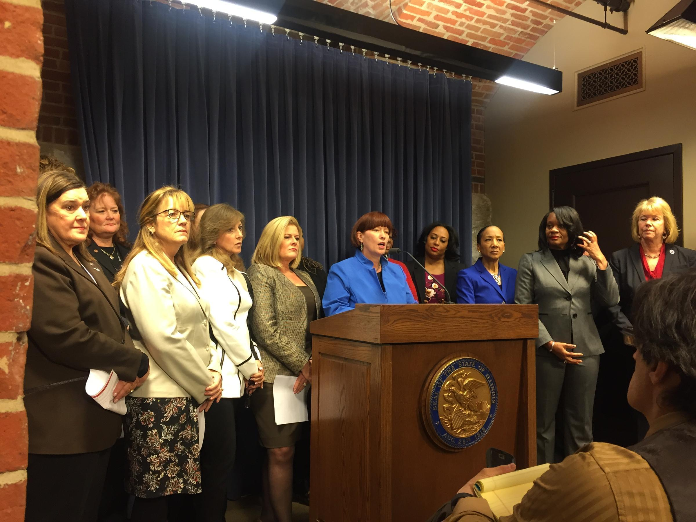 Female State Senators at Press Conference Announcing Creation of Women's Caucus.