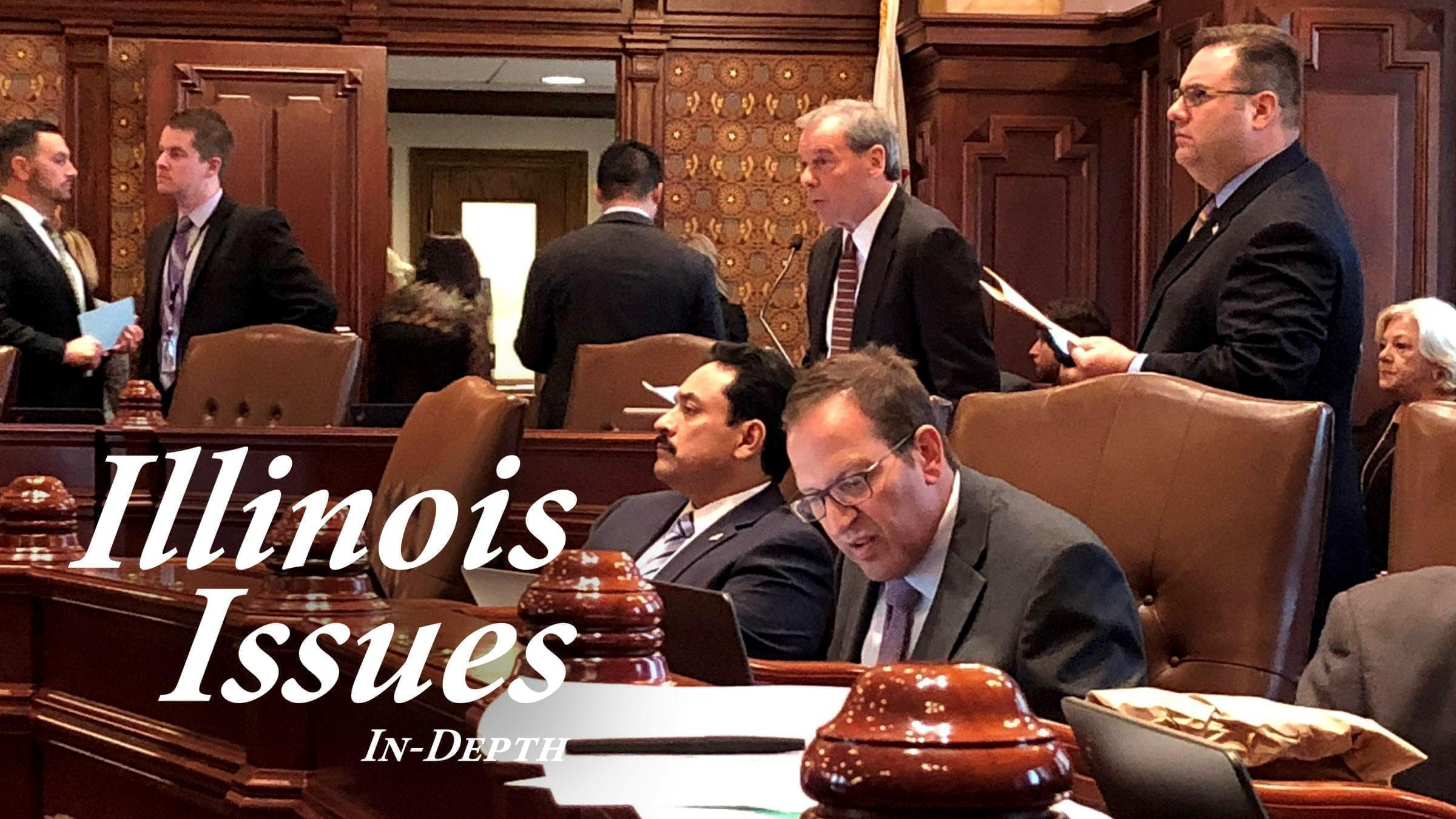 During the veto session debate, Senate President John Cullerton (back) advocates for HB 137 — a proposal to extend the statute of limitation on complaints made to the Inspector General in light of a backlog of complaints.