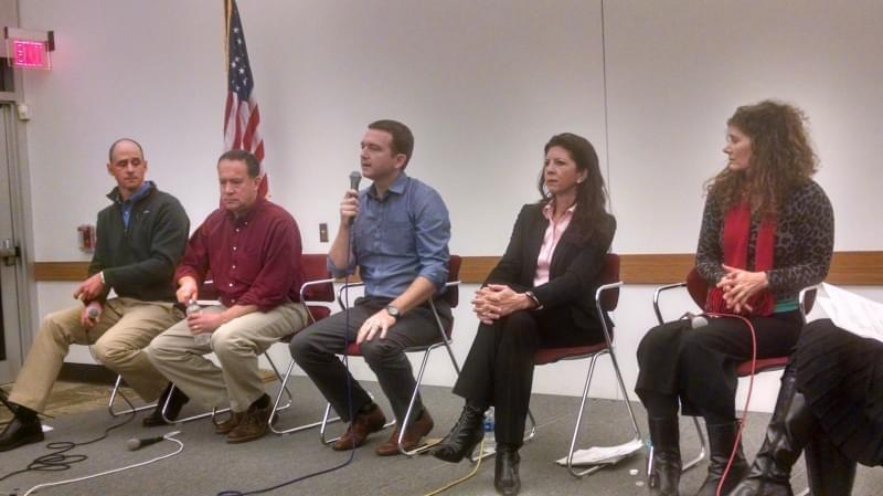 Five 13th congressional Democratic candidates