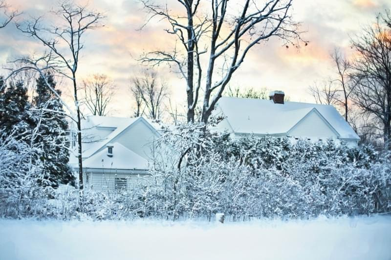 A snowy scene showing a house and row of trees.