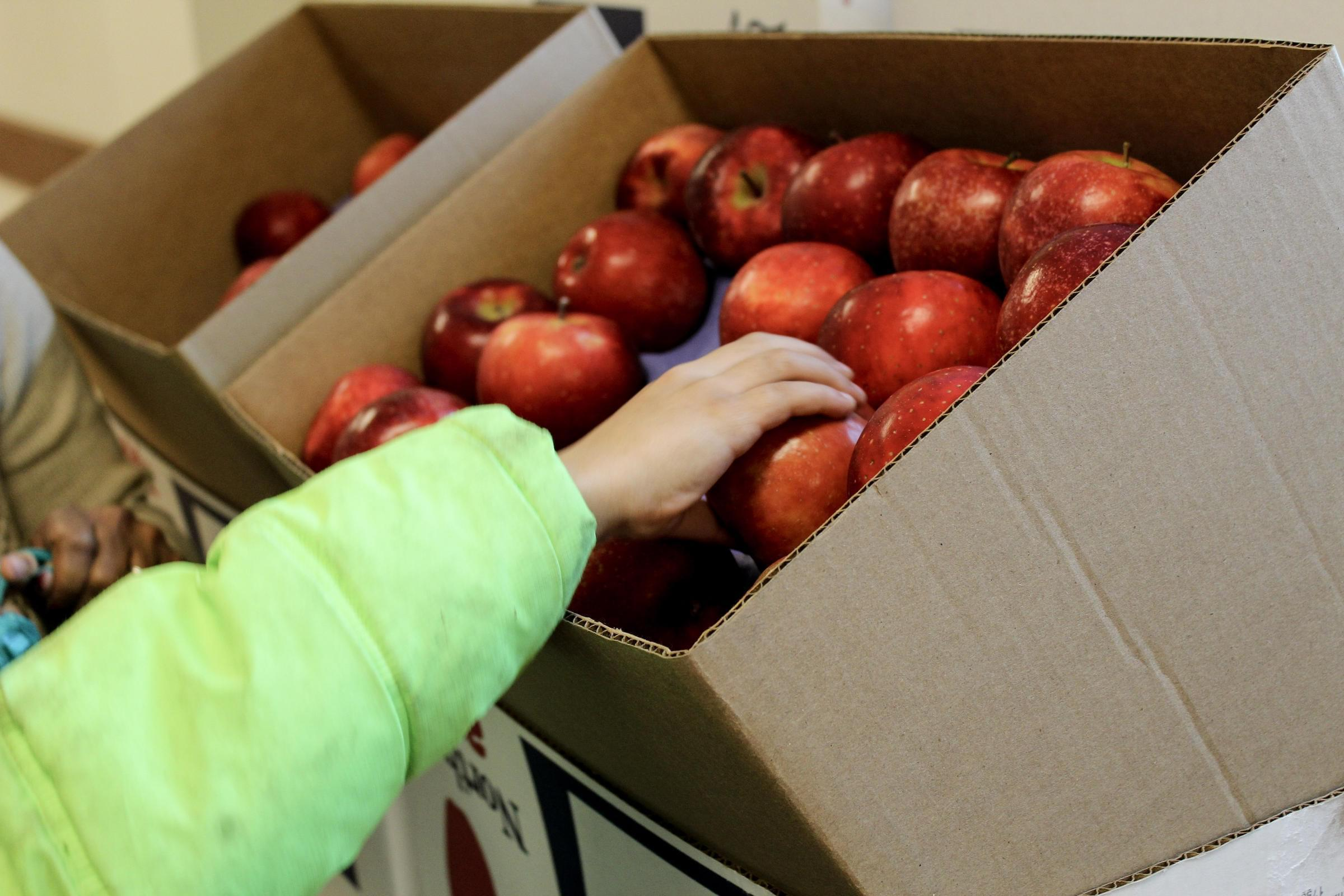 Diane Doherty, executive director of the Illinois Hunger Coalition, says cutting back on benefits like food stamps, can increase food insecurity for many in the state.